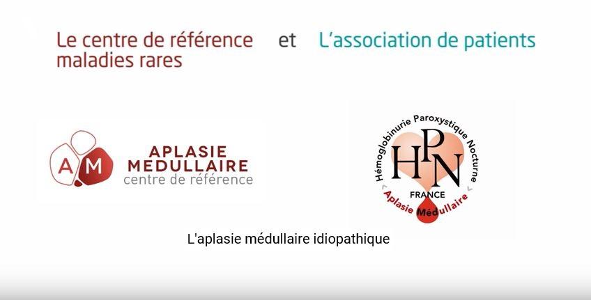 Video d'experts témoins sur l'Aplasie Médullaire Idiopathique en Décembre 2018