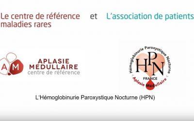 Video d'experts témoins sur l'HPN en Avril 2018